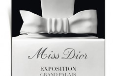 miss_dior_au_grand_palais_480_north_382x